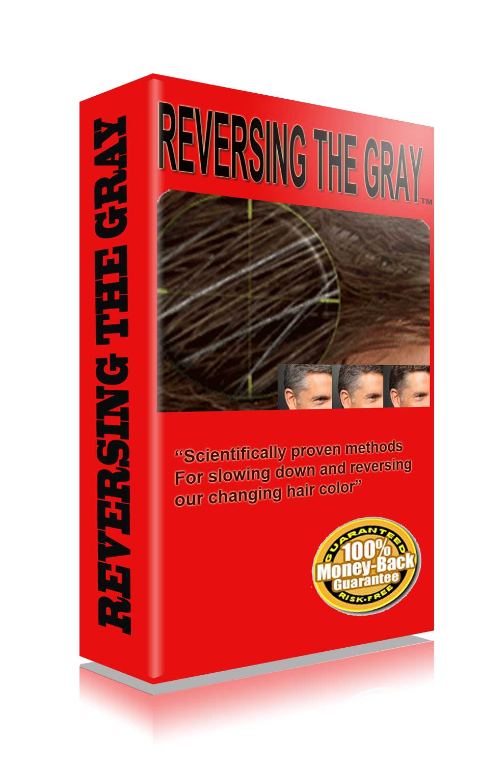 Grey Hair Reversal Ebook